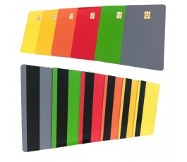 100 x Color Sle4442 Card With Magstripe